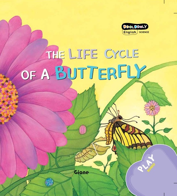 DDOL DDOLY THE LIFE CYCLE OF A BUTTERFLY